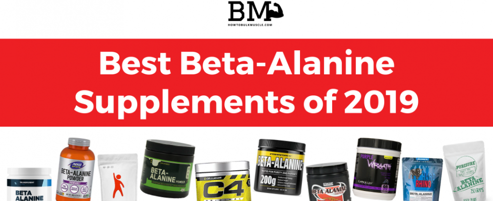 Best Beta-Alanine Supplements of 2019